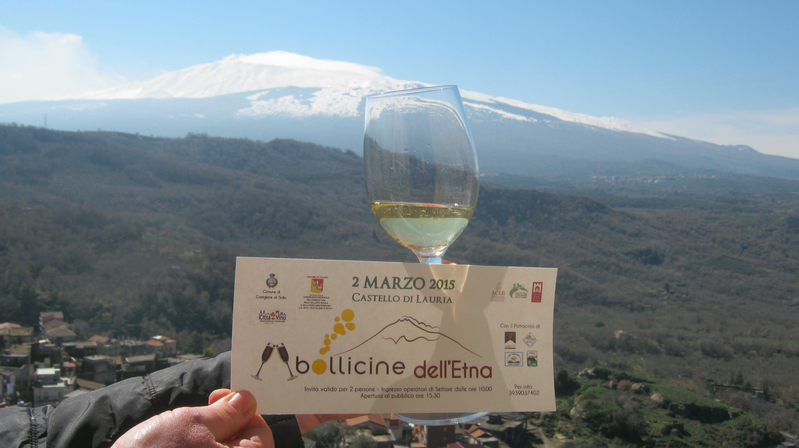 Bollicine dell'Etna 2015